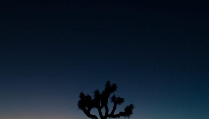 Nick Montemarano Photography
